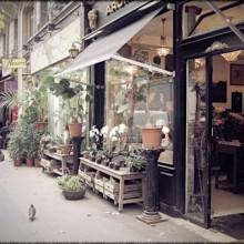 negocios locales por La citta vitta